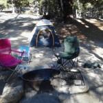 Taken while camping at Fern Basin, Idyllwild http://www.johnpedroza.com/blog1/fern-basin-idyllwild-california/