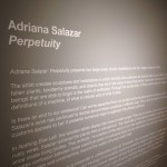 There were several installations by Adriana Salazar.
