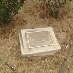 A new time capsule placed in 1970 sits in the middle of a rose garden.