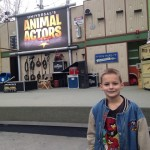 AJ enjoyed seeing all the animals.