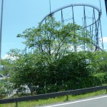 At the third station there was an amusement park called Fuji-Q.